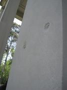 19th Apr 2010 - Belle Meade Bullets
