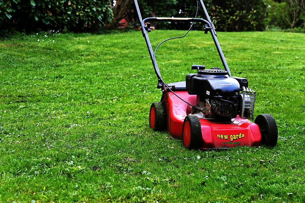 'little red mower'  by harvey