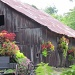Stagecoach Trail Summer Barn by juletee