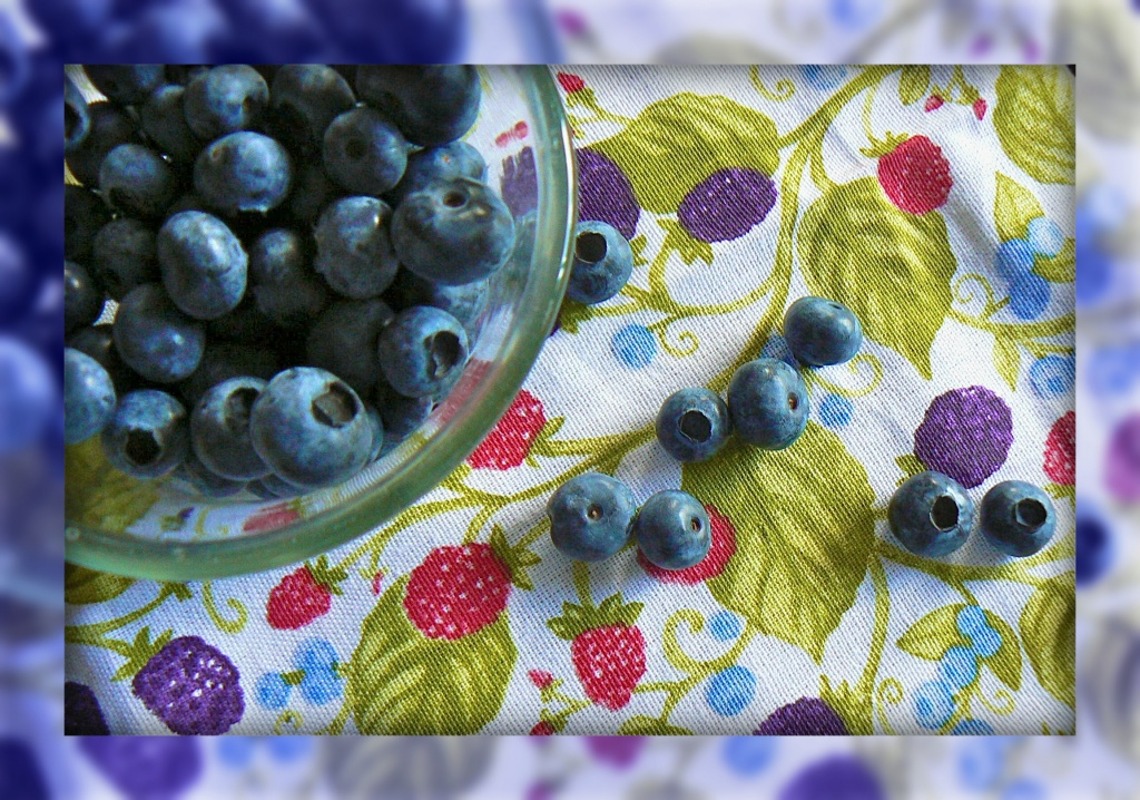 blueberries, blueberries - they bounce in my bowl (from Blueberries, Blueberries by Kathy Patalsky) by reba