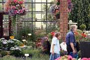 28th Jul 2011 - Garden centre visitors