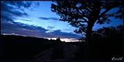 30th Jul 2011 - Evening Silhouette