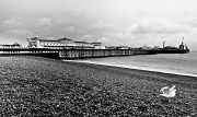 4th Aug 2011 - Brighton Pier in black and white