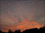 6th Aug 2011 - Fire in the Sky