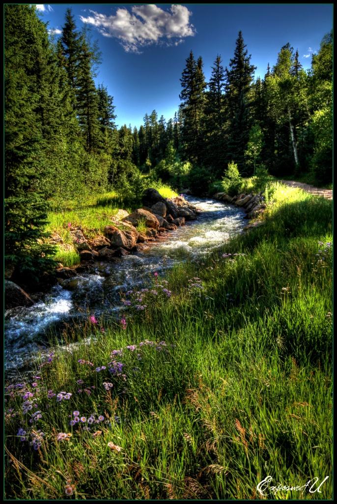 """River Runs Through It"" by exposure4u"