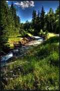 """7th Aug 2011 - """"River Runs Through It"""""""