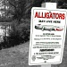 Beware of Alligators! by stownsend