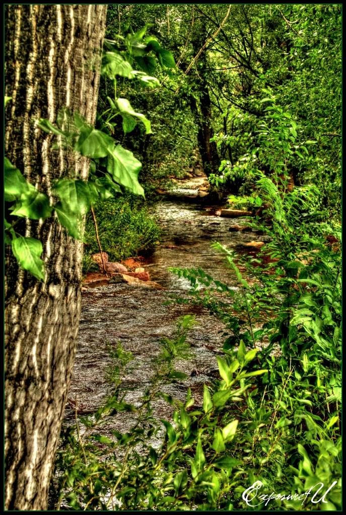 Up a Creek by exposure4u