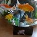 The fish love Bekki by sabresun
