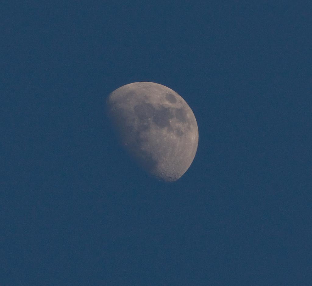 Blue Moon .... by edpartridge