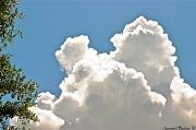 14th Aug 2011 - Cloud