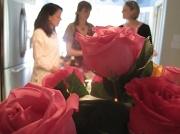 24th Apr 2010 - Roses #2