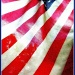 Standard  (The Stars and Stripes) by olivetreeann