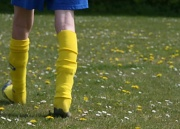 24th Apr 2010 - Co-ordinating Socks and Dandelions