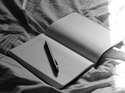 14th Aug 2011 - Blank Page