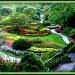 Butchart Gardens by vernabeth