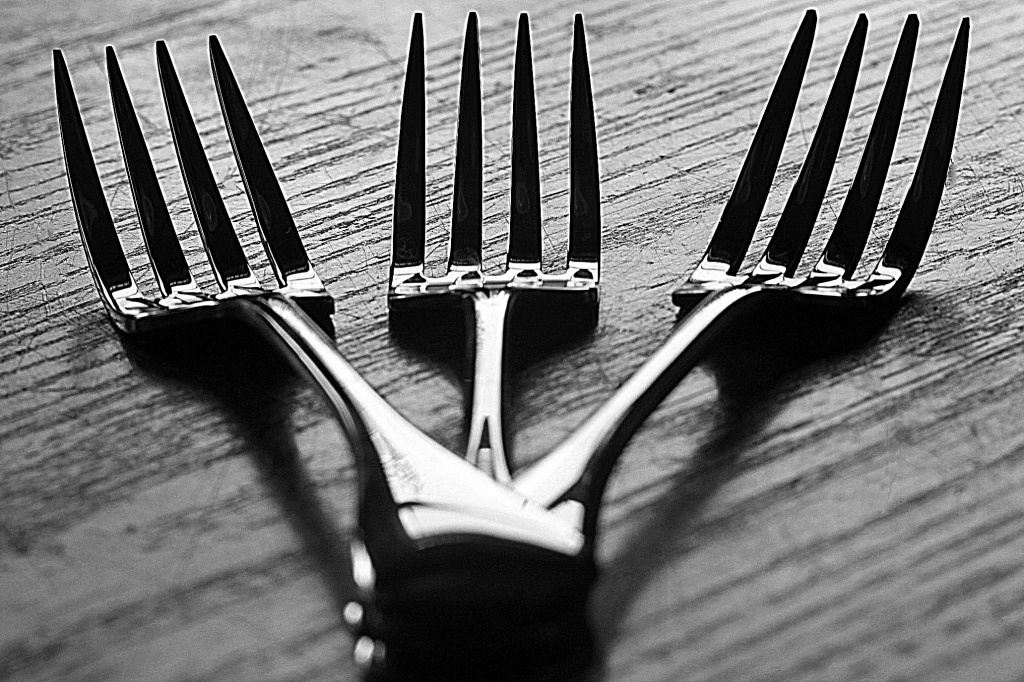 Three Forks by lisabell
