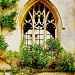 Through the arched window by judithg