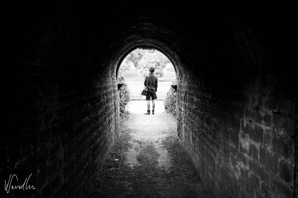Newstead Abbey's tunnel by vikdaddy