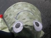 27th Apr 2010 - Soggy Frog
