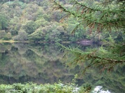 14th Aug 2011 - reflections in the loch