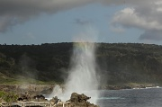 9th Sep 2011 - Blowhole plume with a touch of rainbow