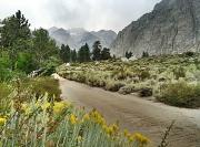 9th Sep 2011 - Sierra Road