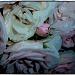 Roses by karendalling