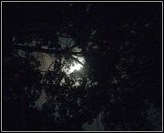12th Sep 2011 - The Moon By Night