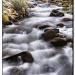 Bishop Creek, Eastern Sierra California by pixelchix