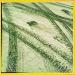 Tracks by mastermek