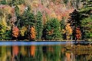 8th Oct 2011 - Lowell Lake