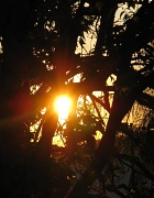 9th Oct 2011 - Sunday Sunset