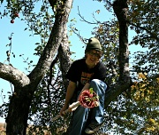9th Oct 2011 - Picking Apples in Vermont