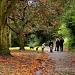 Autumn by rich57