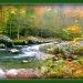 Smoky Mountain Stream by vernabeth
