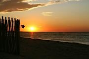 16th Oct 2011 - Sunset Shovel