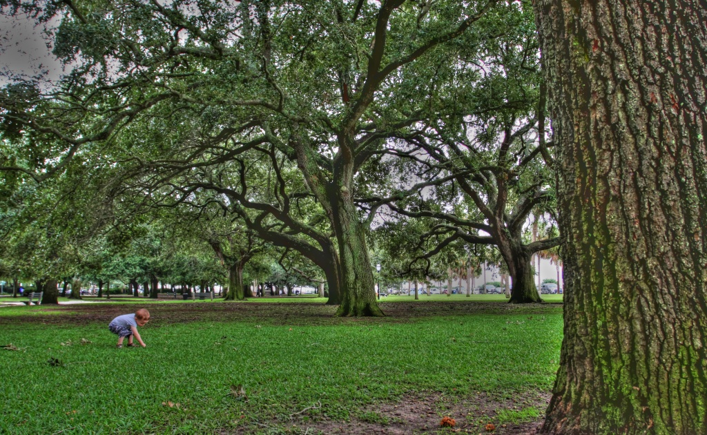 A little adventure to Charleston, SC by egad