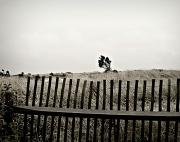 27th Oct 2011 - Beach Behind Bars