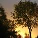 Same view - different sunrise by filsie65