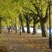 Riverside avenue by dulciknit