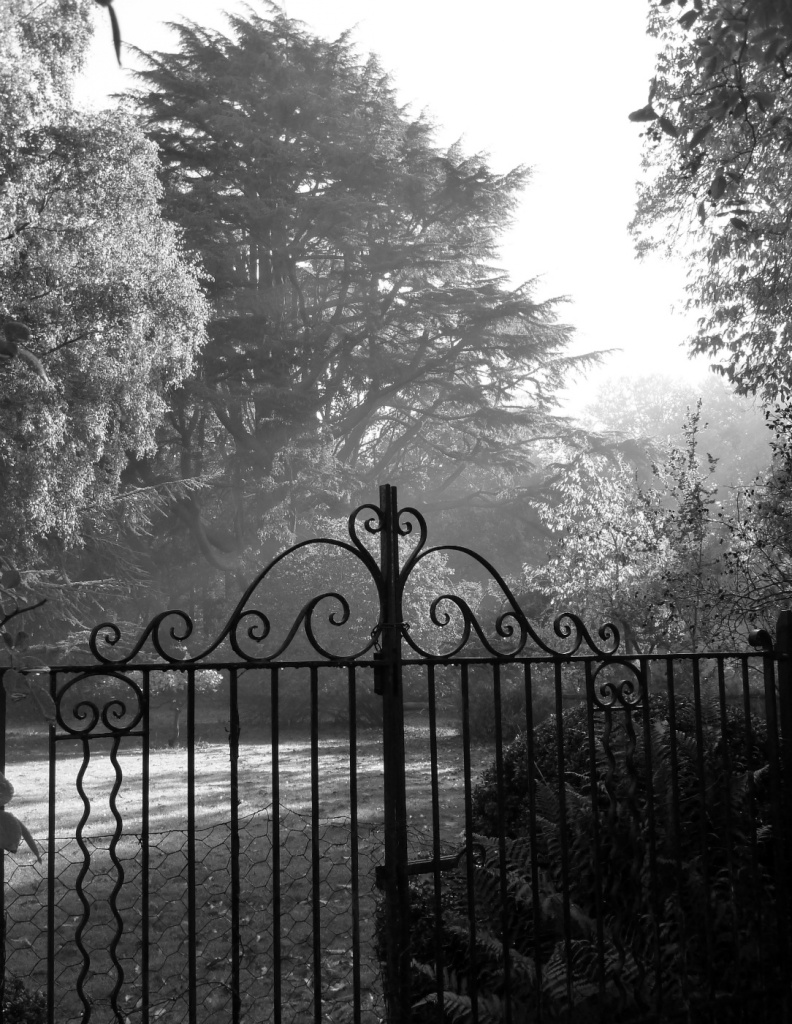 Gate by karendalling