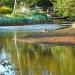Calm Water Under Troubled Bridge by pamelaf