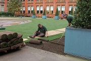 3rd Nov 2011 - Laying New Sod At The Victoria & Albert Museum