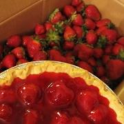 5th May 2010 - May 5. CSA strawberries!