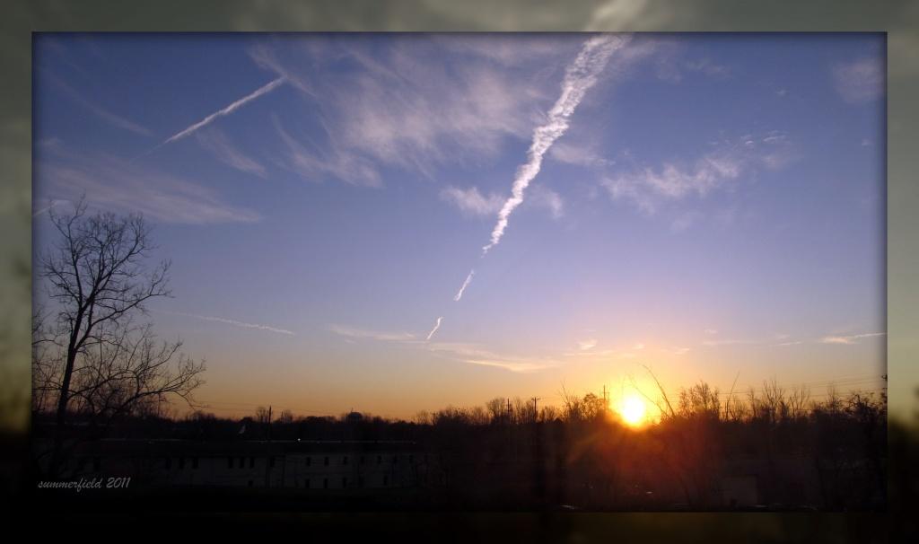 (buffalo) sunrise blinds my eyes... by summerfield