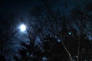 10th Nov 2011 - The moon and the stars and the trees