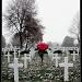 American Cemetery by judithg