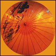 11th Nov 2011 - Chinese (2)