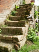 10th May 2010 -                old steps